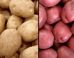 POTATOESBULK