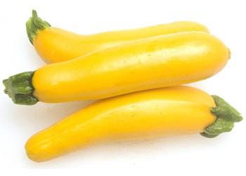 YellowSquash