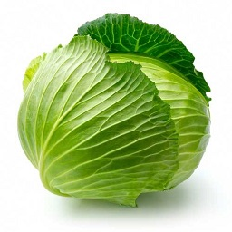 green-cabbage